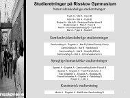 Studieretninger på Risskov Gymnasium