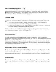 Klik her for at læse skolens vejledning i studieretningsopgaven (pdf)