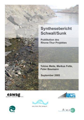 Synthesebericht Schwall/Sunk - Rhone-Thur Projekt - Eawag