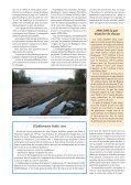 Le plan Loire grandeur nature - RiverNet - Page 4