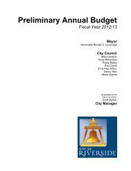Preliminary Annual Budget - City of Riverside
