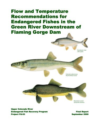 Flow and Temperature Recommendations for Endangered Fishes in ...