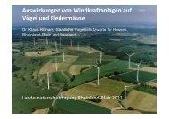 Auswirkungen von Windkraftanlagen auf Vögel und Fledermäuse ...