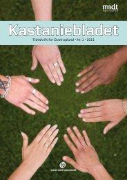 Tidsskrift for Oustruplund • Nr. 1 • 2011 - Region Midtjylland