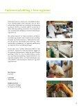 Fødevareudvikling i fem regioner - Region Midtjylland - Page 3