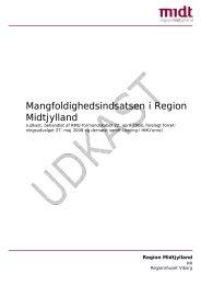 Mangfoldighedsindsatsen i Region Midtjylland