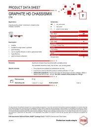 chassismix dtm - RM Paint