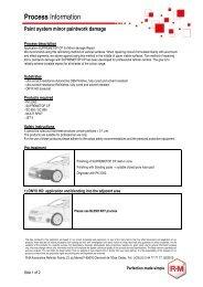 Process Information - RM Paint