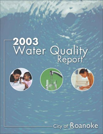 2003 City of Roanoke Water Quality Report - Western Virginia Water ...
