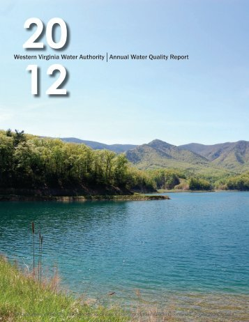 2012 Water Quality Report for Customers in the City of Roanoke ...