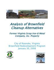 Analysis of Brownfield Cleanup Alternatives - Roanoke
