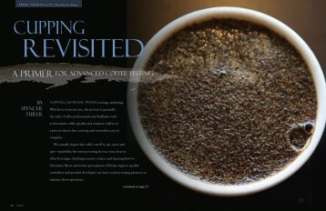 Cupping revisited - Roast Magazine