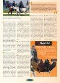 Kompetenz - Euroriding - Seite 5