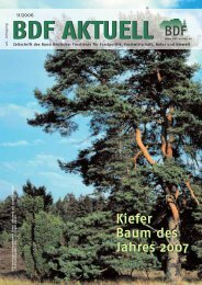 Ausgabe 11/2006 - BDF