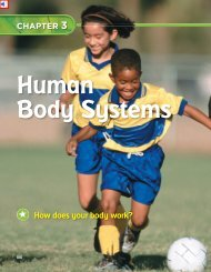 Chapter 3: Human Body Systems