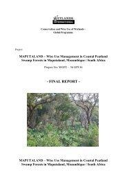 final report - tum