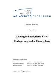 Heterogen-katalysierte Fries- Umlagerung in der Flüssigphase
