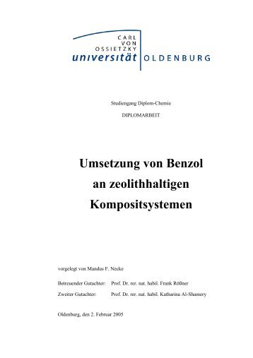 Umsetzung von Benzol an zeolithhaltigen Kompositsystemen