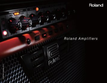 Roland Amplifier Catalog 2012