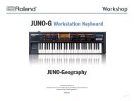 JUNO-Geography - Roland Scandinavia a/s