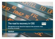 The road to recovery in CEE (PDF, 1709 KB) - Roland Berger
