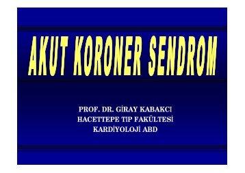 Giray Kabakçı - Güncel Araştırmalar ve Çalışmalar