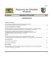 Amtsblatt der Regierung der Oberpfalz Nr. 2 vom 15. Februar 2008