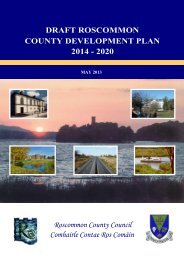 Draft Co Dev Plan 1aa - Roscommon County Council