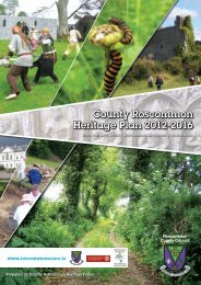 Download County Roscommon Heritage Plan 2012 - 2016