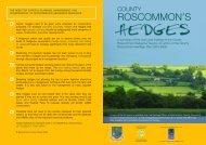 ROSCOMMON'S - Roscommon County Council