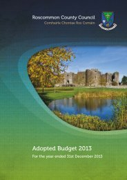 Annual Budget 2013 - Roscommon County Council
