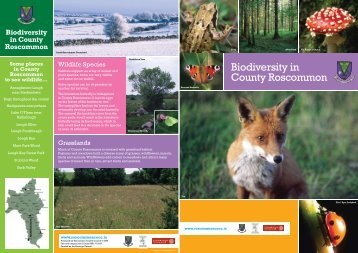 Biodiversity in County Roscommon Part 1.pdf (size 779.7 KB)