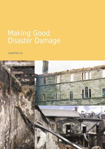 Chapter 16 Making Good Disaster Damage