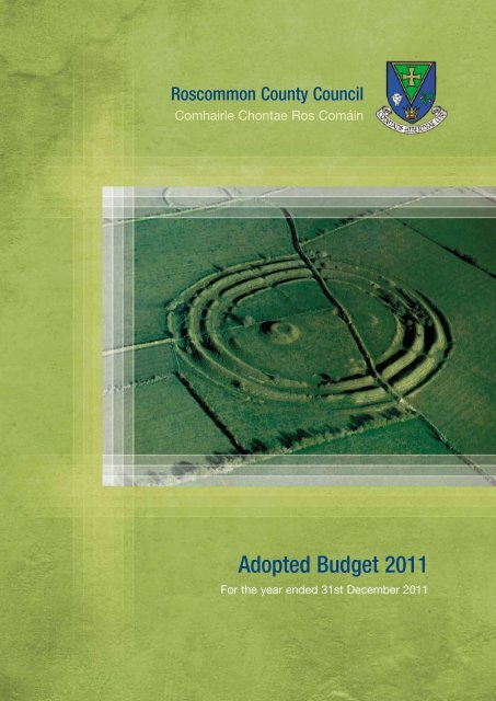Annual Budget 2011 - Roscommon County Council
