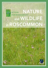 Nature and Wildlife in roscommoN - Roscommon County Council