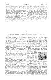Höstsol — 744 — Ibn Fadlan I i, antikva el. latinsk stil. / i ... - Rosekamp