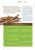 Hausapotheke gegen stressbedingte Erkrankungen - Ayurveda ... - Seite 3