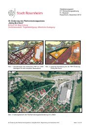 Entwurf der Begründung mit Umweltbericht - Stadt Rosenheim