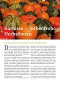 farbenfrohe Herbstboten - Dkv-Residenz in der Contrescarpe - Seite 6