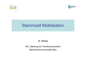 Worel Stammzellen Mobilisation - Österreichisches Rotes Kreuz