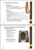 Richtig Heizen mit Holz Vortrag - Page 3