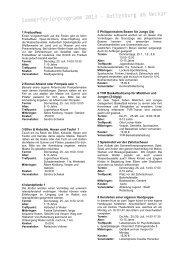 Sommerferienprogrammheft 2013 - Stadt Rottenburg am Neckar