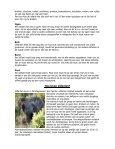 Informatie over de Afrikaanse olifant - Diergaarde Blijdorp - Page 3
