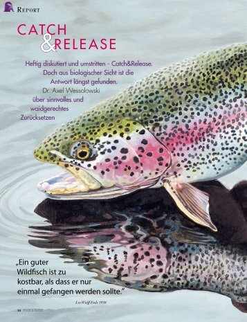 zum Report - Royal Flyfishing