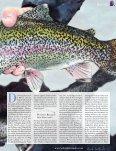 zum Report - Royal Flyfishing - Seite 2