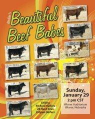 VIEW CATALOG - Bellar Cattle Co.