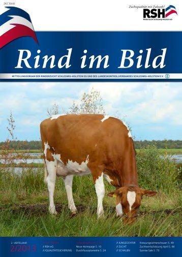 // Rind im Bild 2/2013 1 - Rinderzucht Schleswig-Holstein e.G.