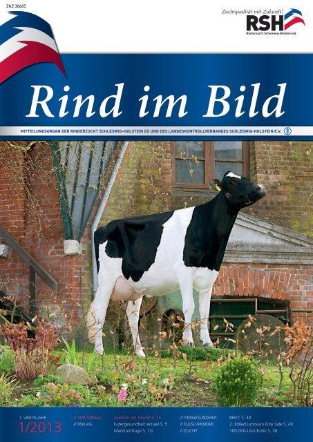 // Rind im Bild 1/2013 1 - Rinderzucht Schleswig-Holstein e.G.