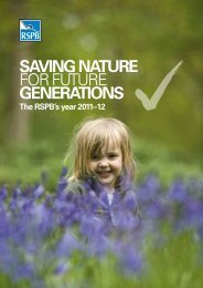 Annual review 2011-2012 - RSPB
