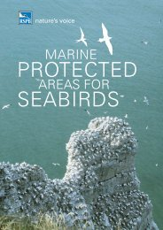 Marine protected areas for seabirds - RSPB